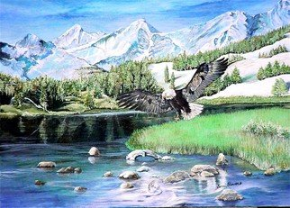 Terri Flowers: 'American Hunter', 2008 Acrylic Painting, Mountains. Artist Description:  Colorado mountains, stream and bald eagle fishing. ...