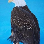 Bald Eagle By Teresa Peterson