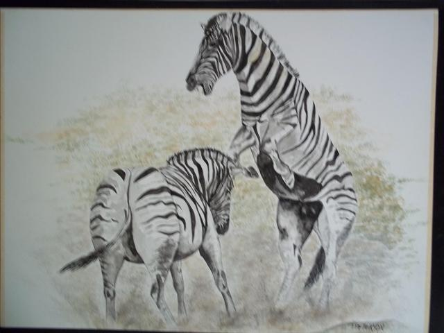Teresa Peterson  'Fighting Zebras', created in 2005, Original Painting Ink.