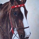 Horse Portrait By Teresa Peterson