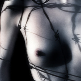Teri Rice: 'breast8x', 2002 Other Photography, Nudes. Artist Description: breast and barbed wire.digital...