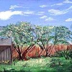 backyard view By Terri Cabral