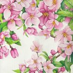 cherry blossom By Tatiana Azarchik