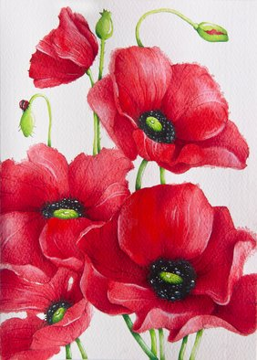 Tatiana Azarchik: 'poppies', 2015 Watercolor, Botanical. Artist Description: Poppies are well- loved by me for their striking flowers. There s no anything more beautiful than looking at red poppy fields. This watercolor painting was inspired by Claude Monet s famous 1873 painting Poppy Field and the place where he lived and created - picturesque Giverny, which I ...
