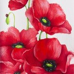 poppies By Tatiana Azarchik