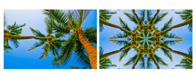 Tiger Lily Jones A Lovely Coco Palms Evening It Is, Kaleidoscopic Diptych 2011