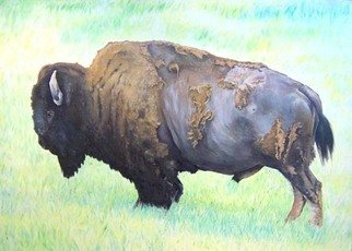 Animals Oil Painting by Timothy W. Young titled: Bizon bizon Tatanka, created in 2005