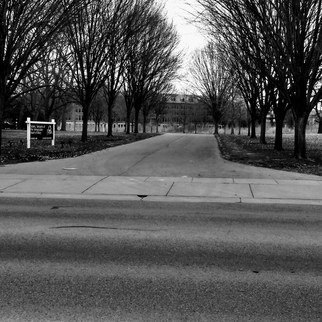 Kimberly Ruttenberg: 'a black and white day', 2019 Black and White Photograph, Atmosphere. A tree lined path...