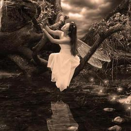 Chasity Ijames: 'Seasons change ', 2007 Other Photography, Fantasy. Artist Description:  photomanip photo  ...