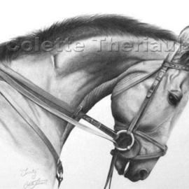 Colette Theriault Artwork Trinity, 2003 Pencil Drawing, Equine