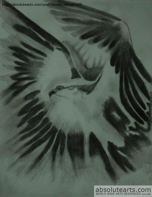 Vibhusha Jain  'Fly High', created in 2013, Original Drawing Pencil.
