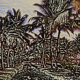palms  By Vincenzo Montella