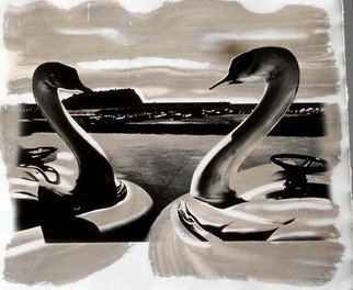 Vincenzo Montella Artwork swans, 2007 Black and White Photograph,