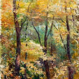in dense forest