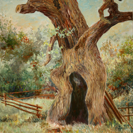 Vladimir Volosov Artwork old oak, 2014 Oil Painting, Landscape