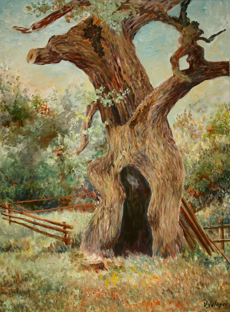 Vladimir Volosov old oak 2014