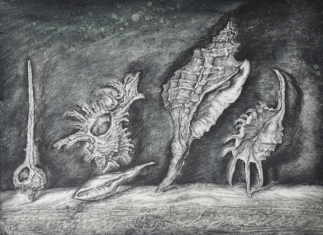 Leonid Stroganov  'Shells', created in 2013, Original Printmaking Etching - Open Edition.