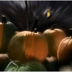 A Rush Of Painted Pumpkins, Wayne King