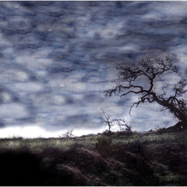 Wayne King: 'California', 2008 Mixed Media Photography, Surrealism. Artist Description:  California Oak in a painted sky. Moody and evocative image  ...