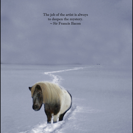 Wayne King: 'The Ponys Trail Francis Bacon Quote', 2014 Color Photograph, Figurative. Artist Description:  A pony on a long trail into the mist. Quote from Sir Francis Bacon: The job of the artist is always to deepen the mystery.This is a limited edition art poster. Only 100 signed prints will be made.The original has been archived and kept only for ...