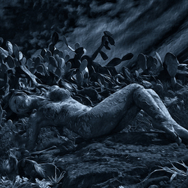 Wayne Quilliam Artwork The Art of Wayne Quilliam, 2014 Mixed Media Photography, Nudes