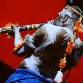 Wik Didgeridoo