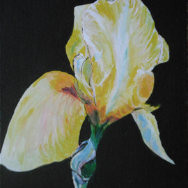 Wendy Goerl Artwork Isolated Iris, 2011 Acrylic Painting, Floral