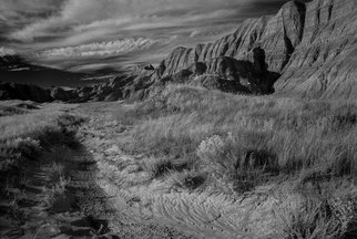 George Wilson: 'Deer Haven I', 2016 Black and White Photograph, Landscape. Artist Description:    Infrared Black and White Landscape at Conata Picnic Area Trailhead, SD - printed on a 116 aluminum sheet and mounted with a metal easel or float mount so they are ready to display as soon as they arrive    ...