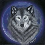 wolf moon By Michaeline Mcdonald