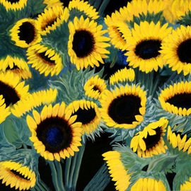 Wm. Kelly Bailey Artwork Sunflowers, 2007 Acrylic Painting, Floral