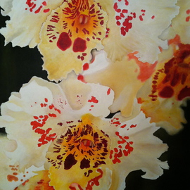 Hermon  Woodall: 'Le Moye', 2014 Oil Painting, Floral. Artist Description:   Limited Edition Orchid. Le Moye ...