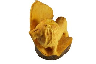 Kir Asariotis: 'lions', 2015 Wood Sculpture, Animals. Artist Description:  lemon tree   ...