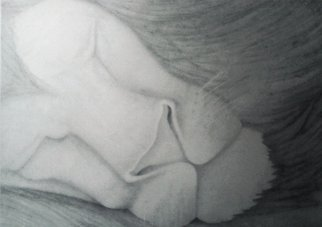 Pencil Drawing by Yohana Moshi titled: the sleeping lion, 2014