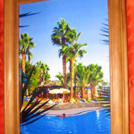 Palms Of Cyprus Canvas Very Colorful Artwork, Andrew Young