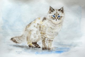 Yulia Schuster: 'cat', 2016 Watercolor, Animals. Artist Description: This is one of my original fine art watercolour paintings. Using artists  quality paints and paper. It is signed and dated on the front pet lover art  pet portrait  watercolor animal art  watercolor animals  watercolor cat animalbluecatwatercolour...