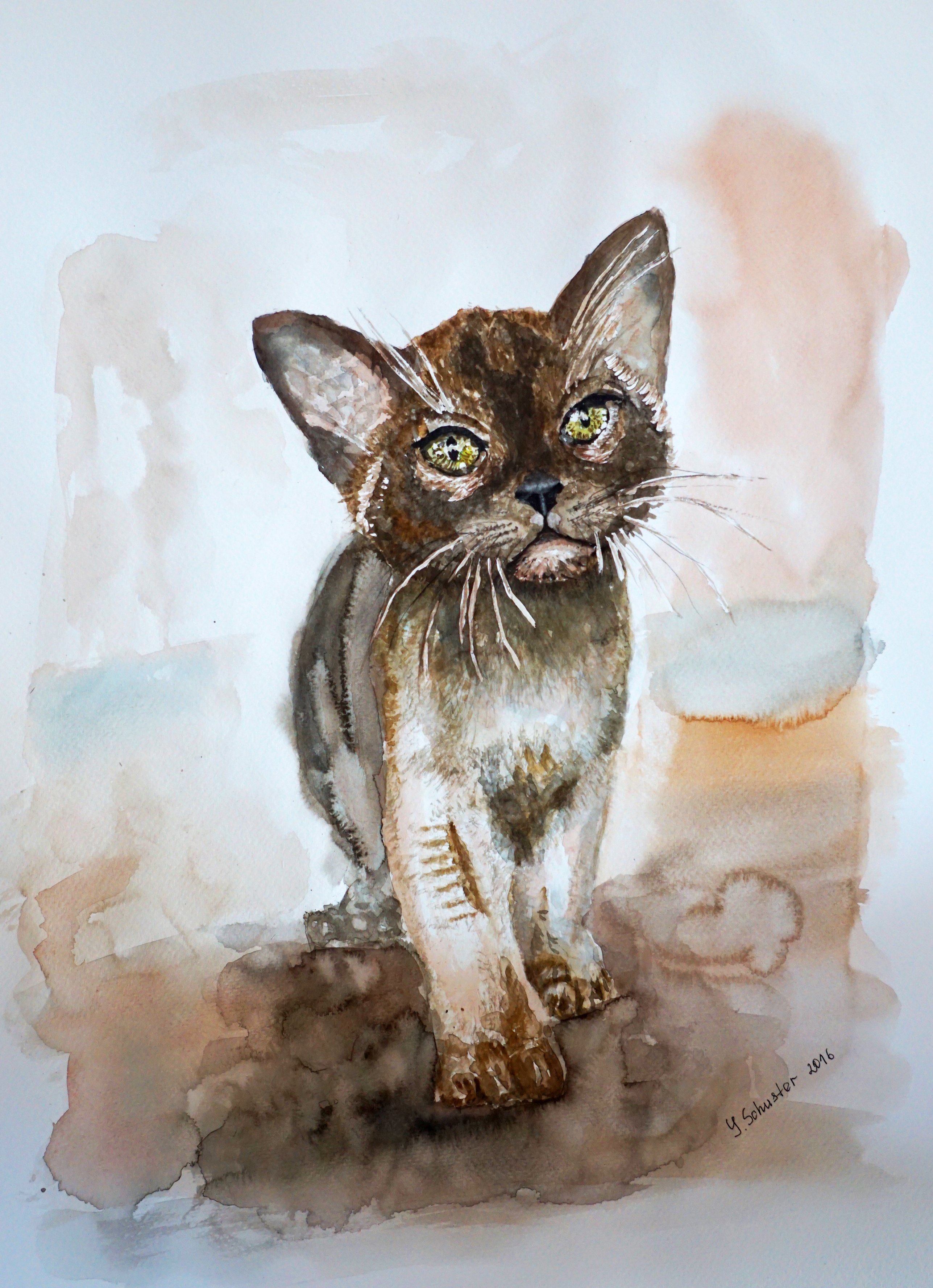 Yulia Schuster: 'chocolate burmese kitten', 2016 Watercolor, Animals. Artist Description: This is one of my original fine art watercolour paintings. Using artists  quality paints and paper. It is signed and dated on the front brown cat  cat and fish  chocolate burmese kitten  pet lover art  pet portrait  watercolor animal art  watercolor cat  watercolor painting animalburmesecatkitten...