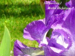 Rickie Dickerson Artwork Iris Portrait I, 2006 Iris Portrait I, Floral