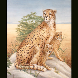 Cheetah With Cubs By Marsha Bowers