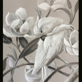 parrot with magnolia sketch