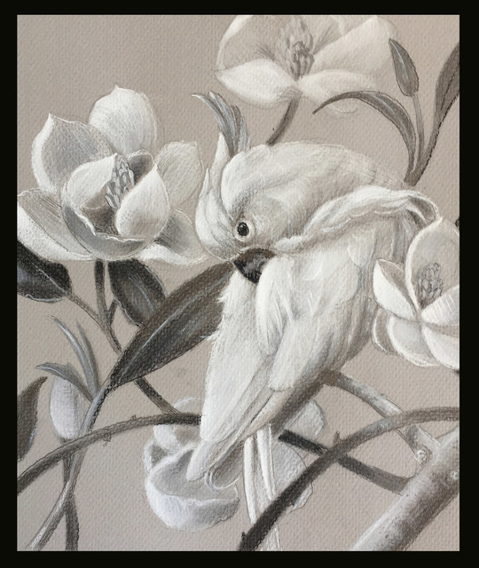 Marsha Bowers  'Parrot With Magnolia Sketch', created in 2017, Original Drawing Pencil.