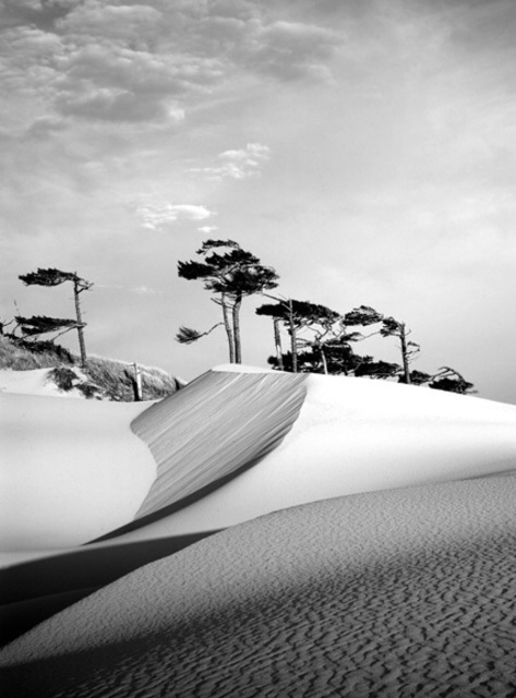 Jack Arnold  'Oregon Dunes', created in 2006, Original Photography Black and White.