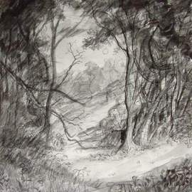 Dana Zivanovits Artwork FOREST CLEARING, 1991 Charcoal Drawing, Landscape