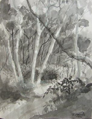 Dana Zivanovits: 'FOREST STREAM', 1986 Ink Painting, Landscape.  India ink on acid free sketch paper- a signed and dated Zivanovits original. Note ; Paper is white despite photo. ...