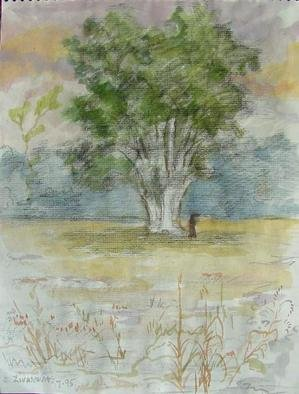 Artist: Dana Zivanovits - Title: OLD OAK TREE - Medium: Watercolor - Year: 1995