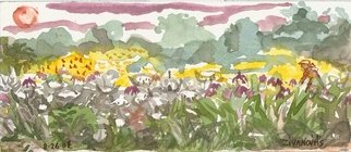 Artist: Dana Zivanovits - Title: WILDFLOWER  MEADOW - Medium: Watercolor - Year: 2007