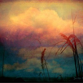 Zunilda Sarete: 'Brooklyn Sky I', 2010 Other Photography, Inspirational. Artist Description:      Landscape photomanipulation using texture.     ...