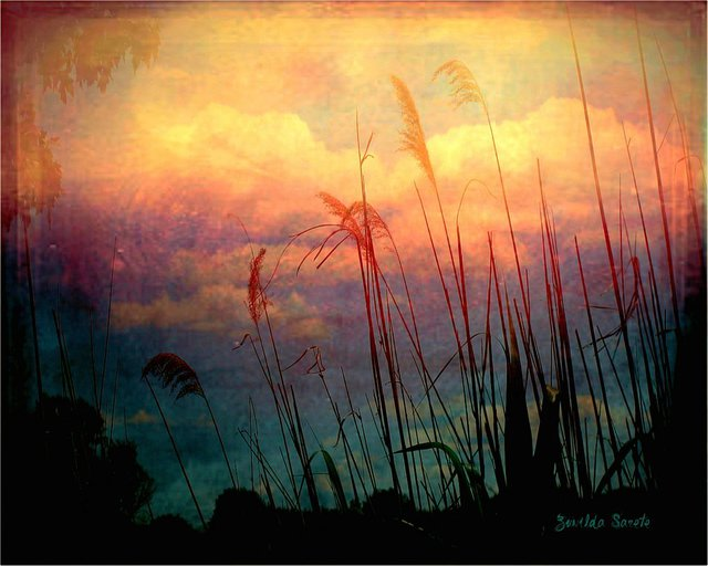 Zunilda Sarete  'Brooklyn Sky II', created in 2010, Original Photography Other.