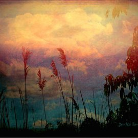 Zunilda Sarete: 'Brooklyn Sky III', 2010 Other Photography, Inspirational. Artist Description:        Landscape photomanipulation using texture.       ...