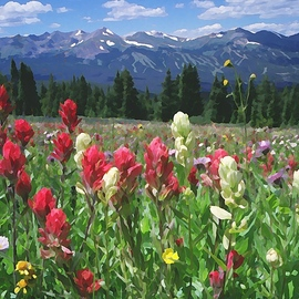 Steve Tohari: 'wildflowers breckenridge 1', 2018 Color Photograph, Landscape. Artist Description: Wildflowers above Breckenridge, Colorado - Indian paintbrush on the Tundra. Photograph edited for painted effect. Colorado, Breckenridge, wildflowers, landscape, Tundra, Indian Paintbrush...