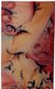 Richard Lazzara - birds of paradise, Birds